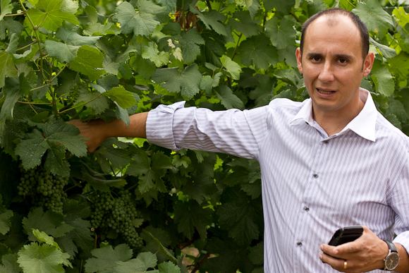 Carlos stands showing some grapes on the vine